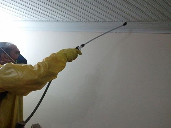 Dedetização Mosquito da Dengue
